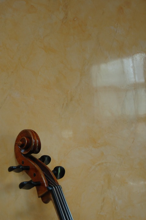 Venetian plaster music room 2